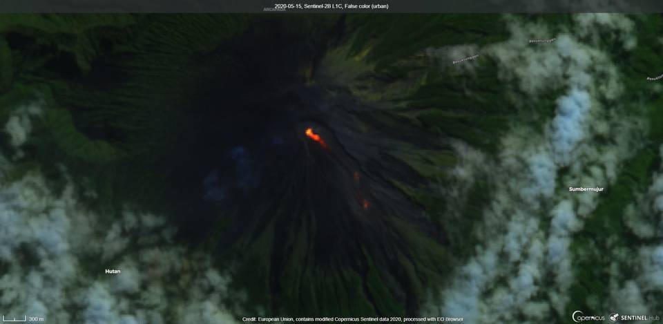 Lava flows from Semeru volcano on the SE flank remain active (image: Sentinel 2)