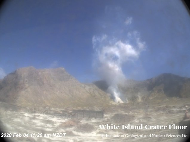 White steam plume from White Island´s crater today (image: GeoNet)