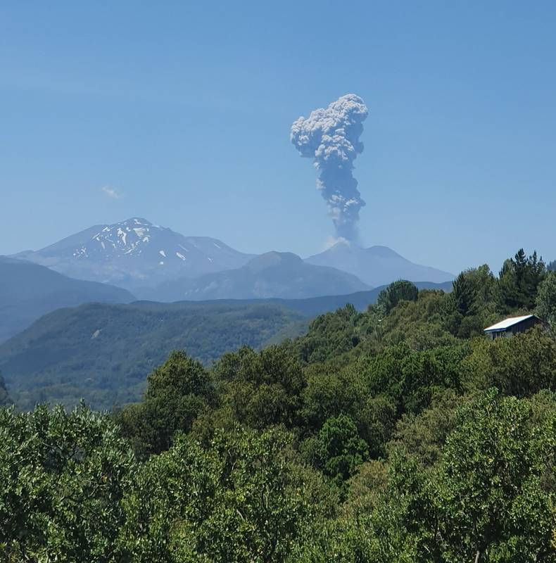 Explosion from Nevados de Chillán volcano on 30 January (image: SERNAGEOMIN)