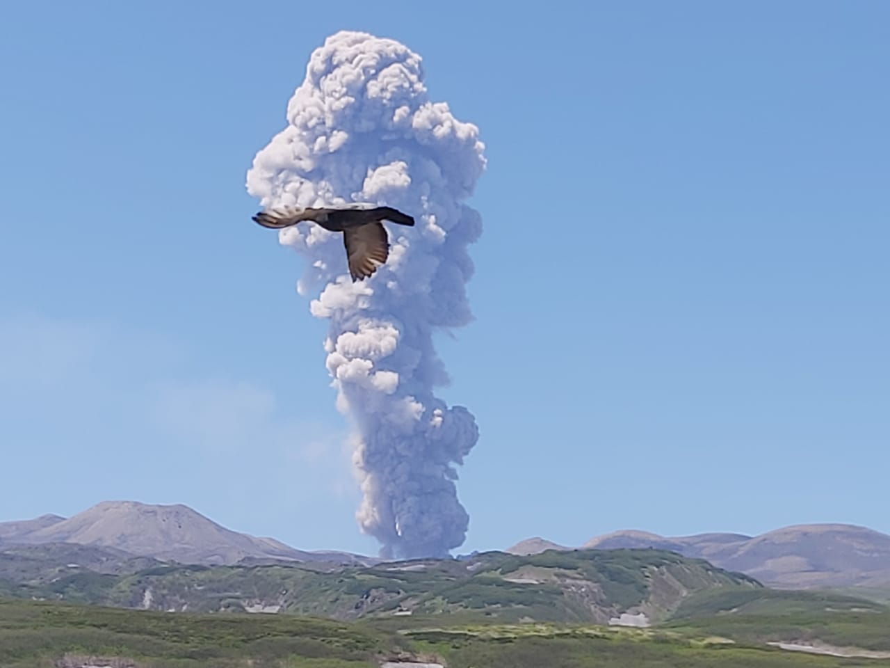 Eruption of Ebeko on 24 June 2020 (image: Leonid Kotenko)
