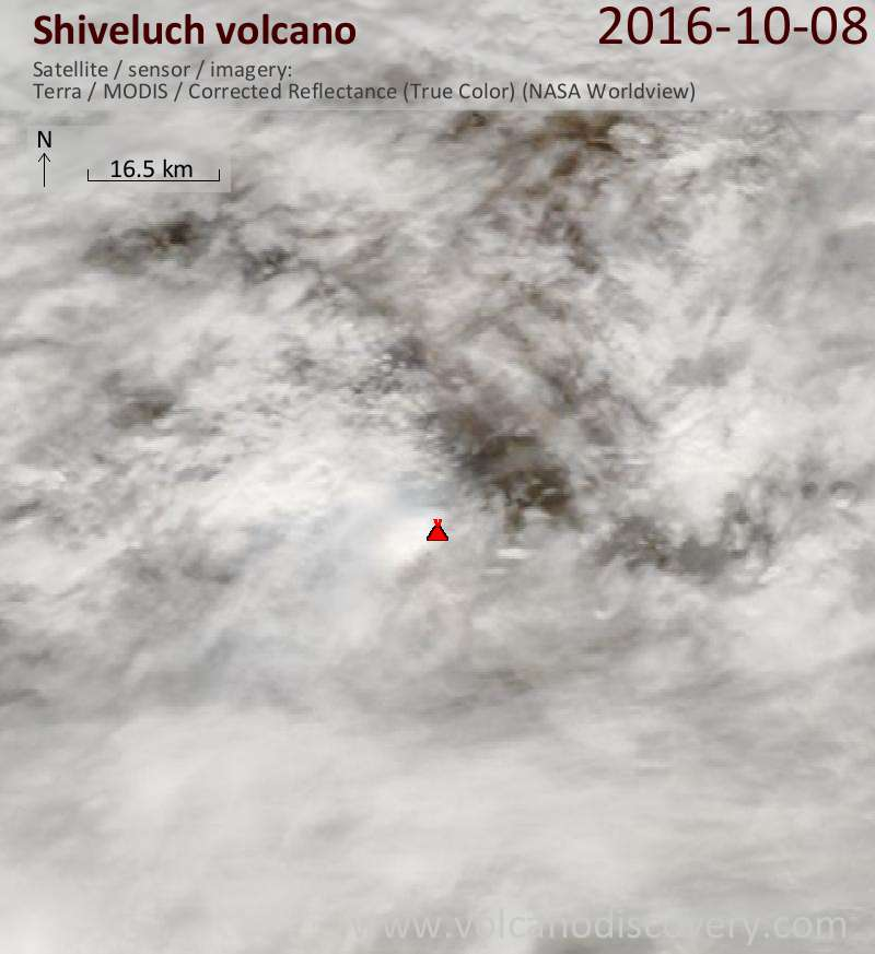 Satellite image of Shiveluch volcano on  8 Oct 2016