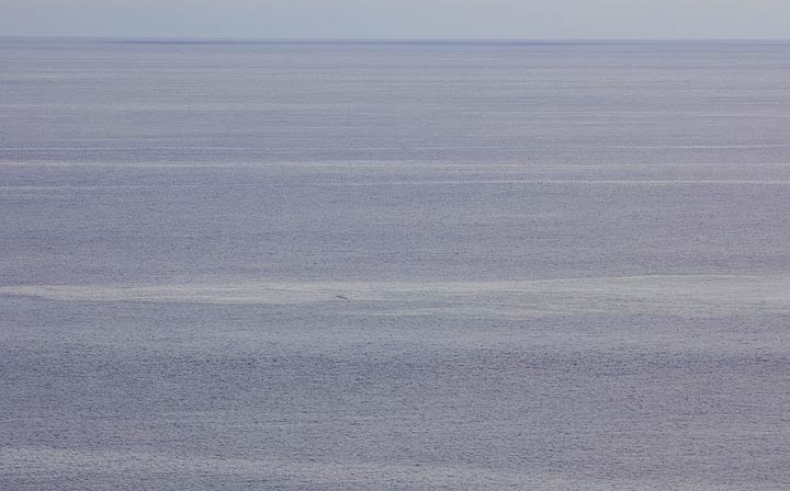 The area of the submarine vent seen on Thursday.