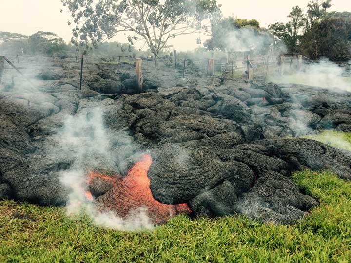 Advancing lava flow near Pahoa yesterday (image: HVO)